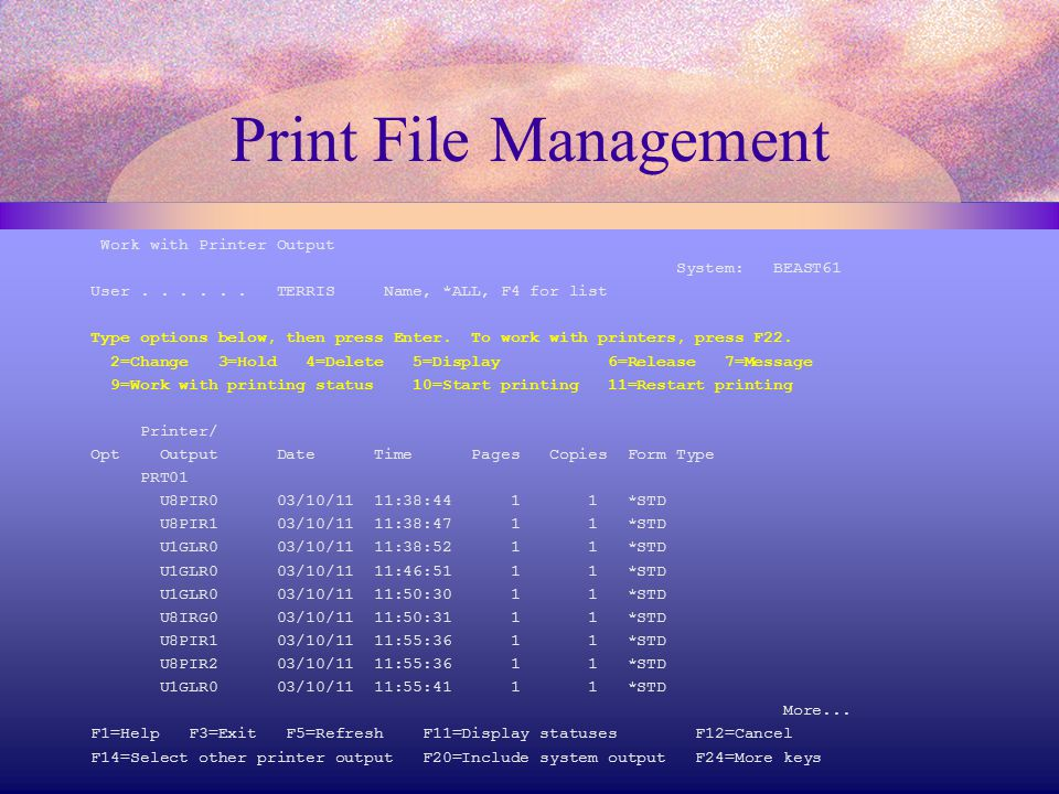Print File Management Work with Printer Output System: BEAST61 User......
