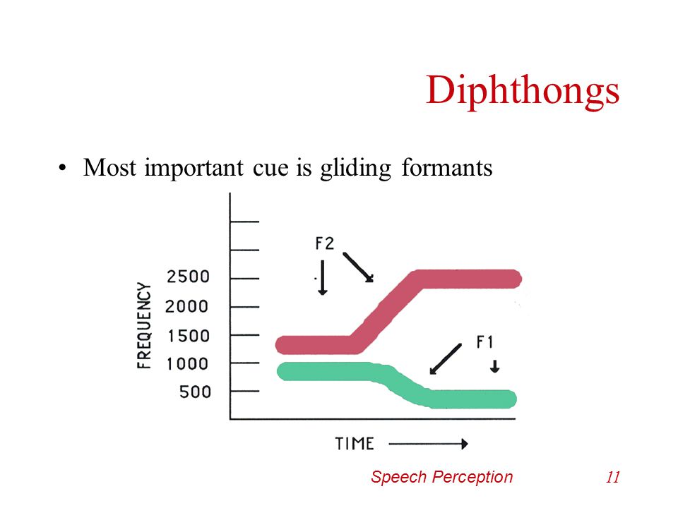 Speech Perception10 Vowels