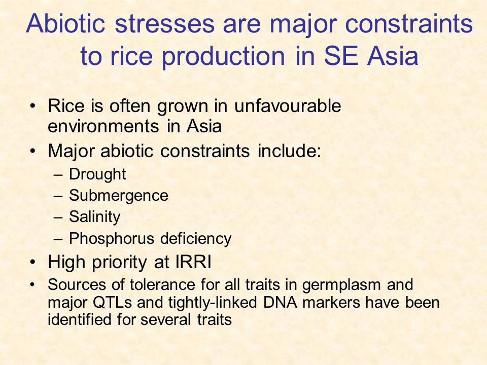 Abiotic stresses are major constraints to rice production in SE Asia Rice is often grown in unfavourable environments in Asia Major abiotic constraints include: –Drought –Submergence –Salinity –Phosphorus deficiency High priority at IRRI Sources of tolerance for all traits in germplasm and major QTLs and tightly-linked DNA markers have been identified for several traits