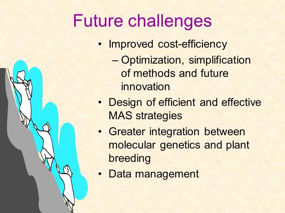 Future challenges Improved cost-efficiency –Optimization, simplification of methods and future innovation Design of efficient and effective MAS strategies Greater integration between molecular genetics and plant breeding Data management