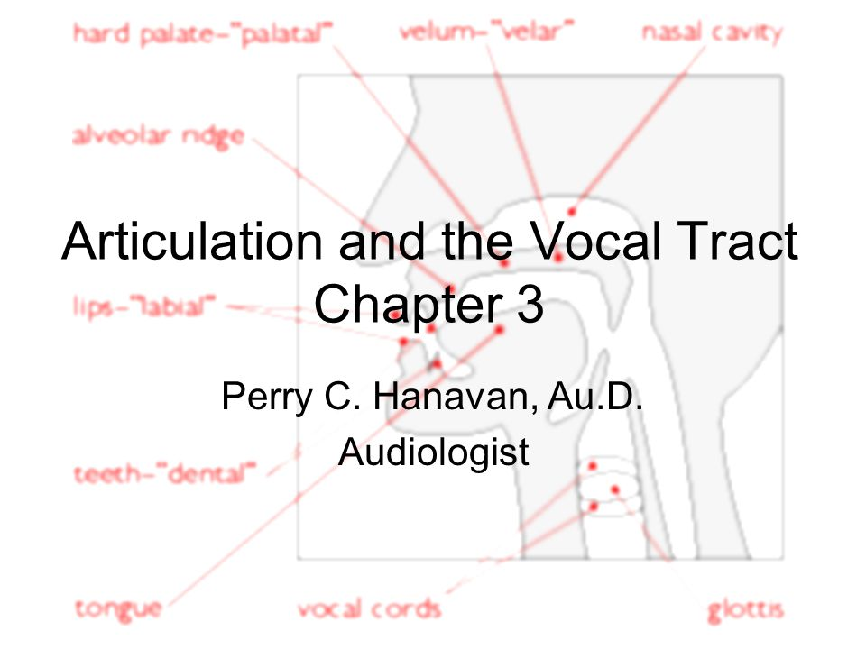 Articulation and the Vocal Tract Chapter 3 Perry C. Hanavan, Au.D. Audiologist