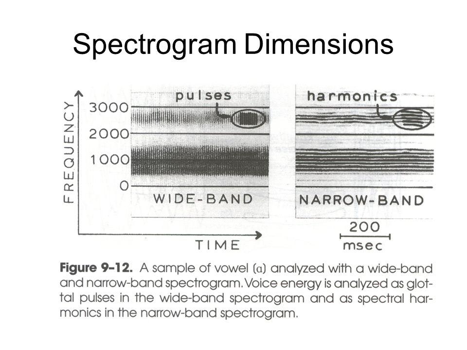 Spectrogram Dimensions