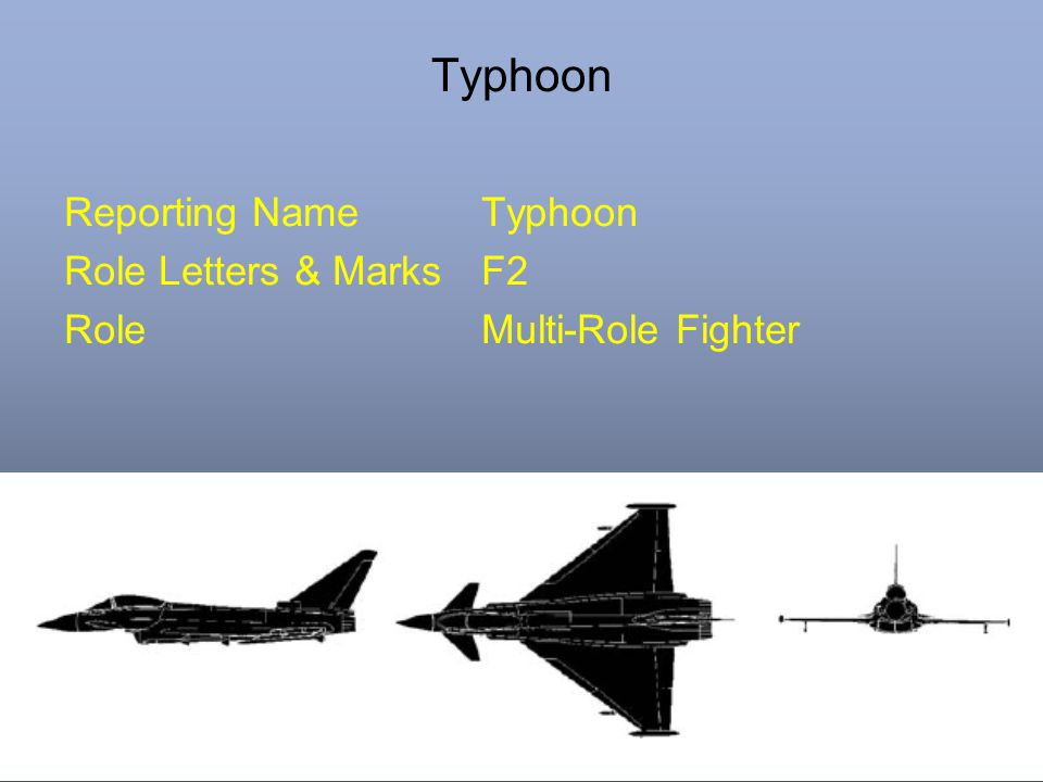 Typhoon Reporting NameTyphoon Role Letters & MarksF2 RoleMulti-Role Fighter