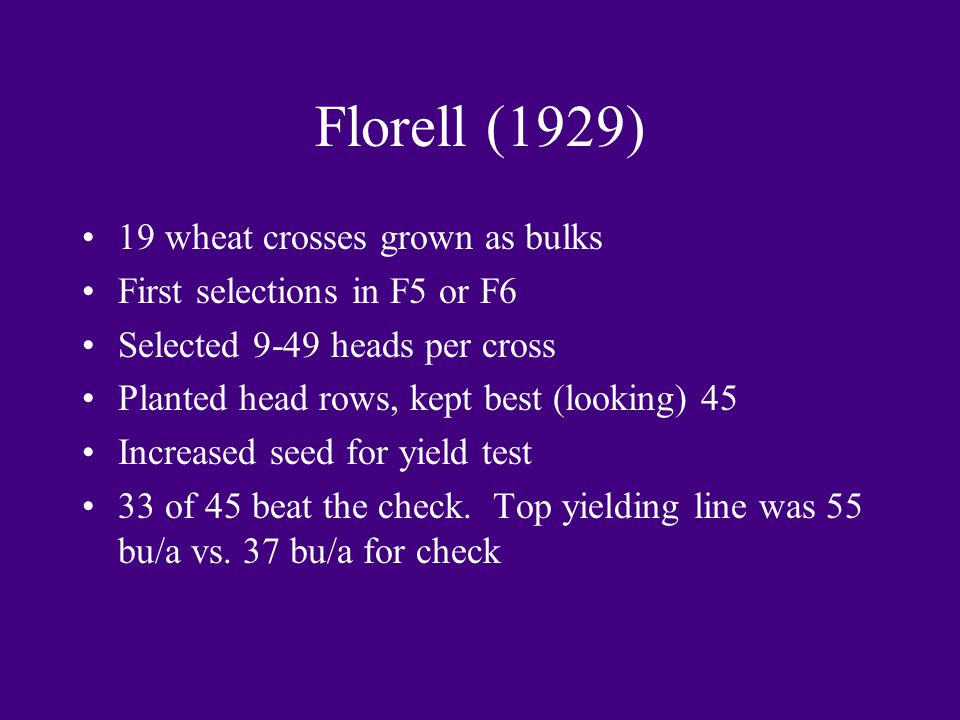 Florell (1929) 19 wheat crosses grown as bulks First selections in F5 or F6 Selected 9-49 heads per cross Planted head rows, kept best (looking) 45 In