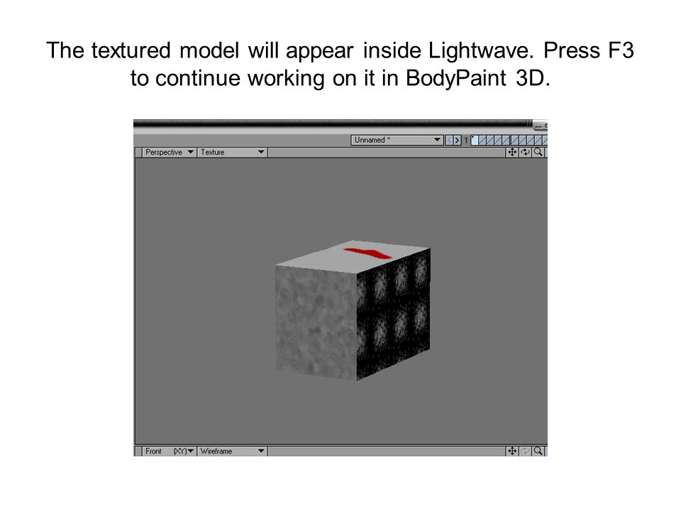 The textured model will appear inside Lightwave.