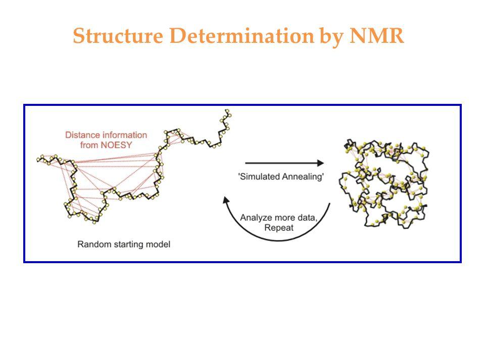 Structure Determination by NMR