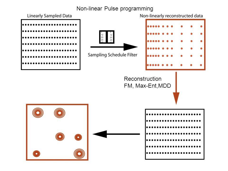 Non-linear Pulse programming Reconstruction FM, Max-Ent,MDD