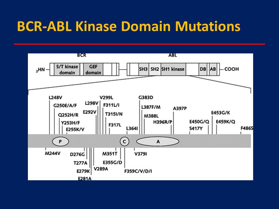BCR-ABL Kinase Domain Mutations
