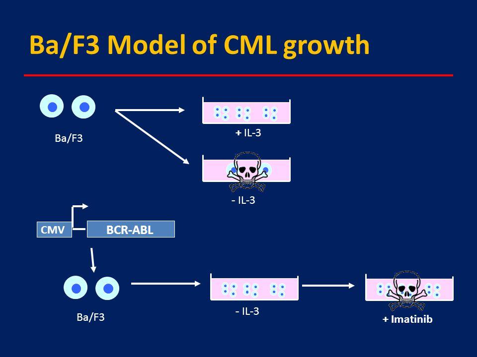 Ba/F3 Model of CML growth BCR-ABL CMV + IL-3 - IL-3 Ba/F3 - IL-3 + Imatinib