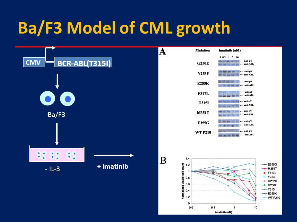 Ba/F3 Model of CML growth BCR-ABL(T315I) CMV Ba/F3 - IL-3 + Imatinib