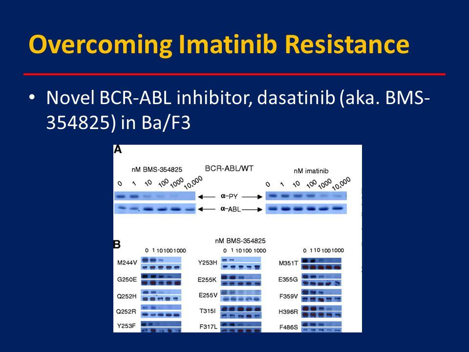 Overcoming Imatinib Resistance Novel BCR-ABL inhibitor, dasatinib (aka. BMS- 354825) in Ba/F3
