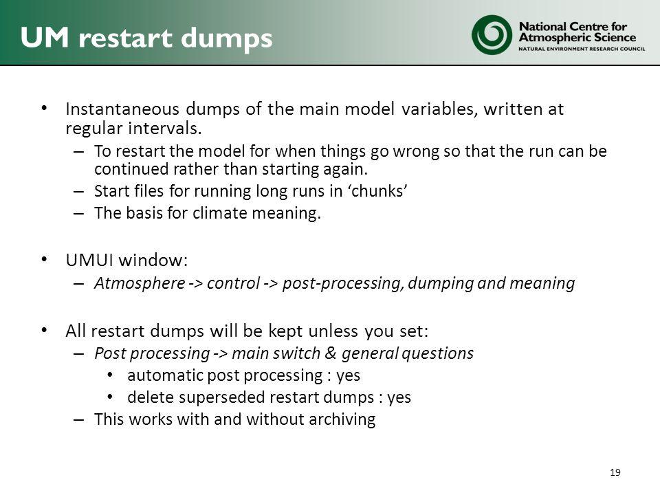 Instantaneous dumps of the main model variables, written at regular intervals.
