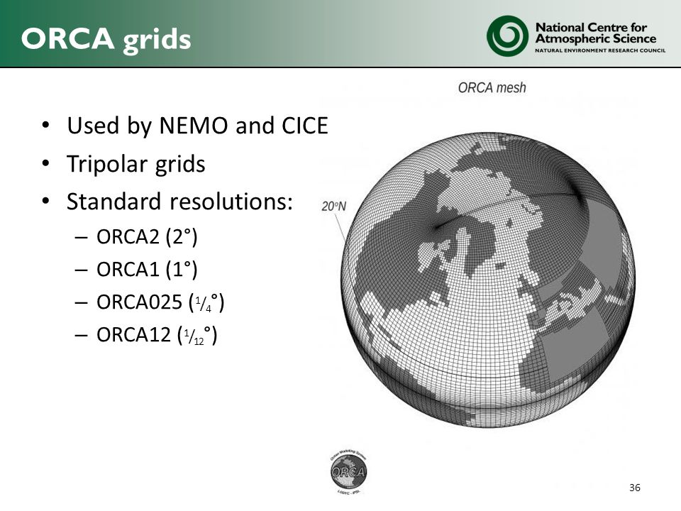 ORCA grids Used by NEMO and CICE Tripolar grids Standard resolutions: – ORCA2 (2°) – ORCA1 (1°) – ORCA025 ( 1 / 4 °) – ORCA12 ( 1 / 12 °) 36
