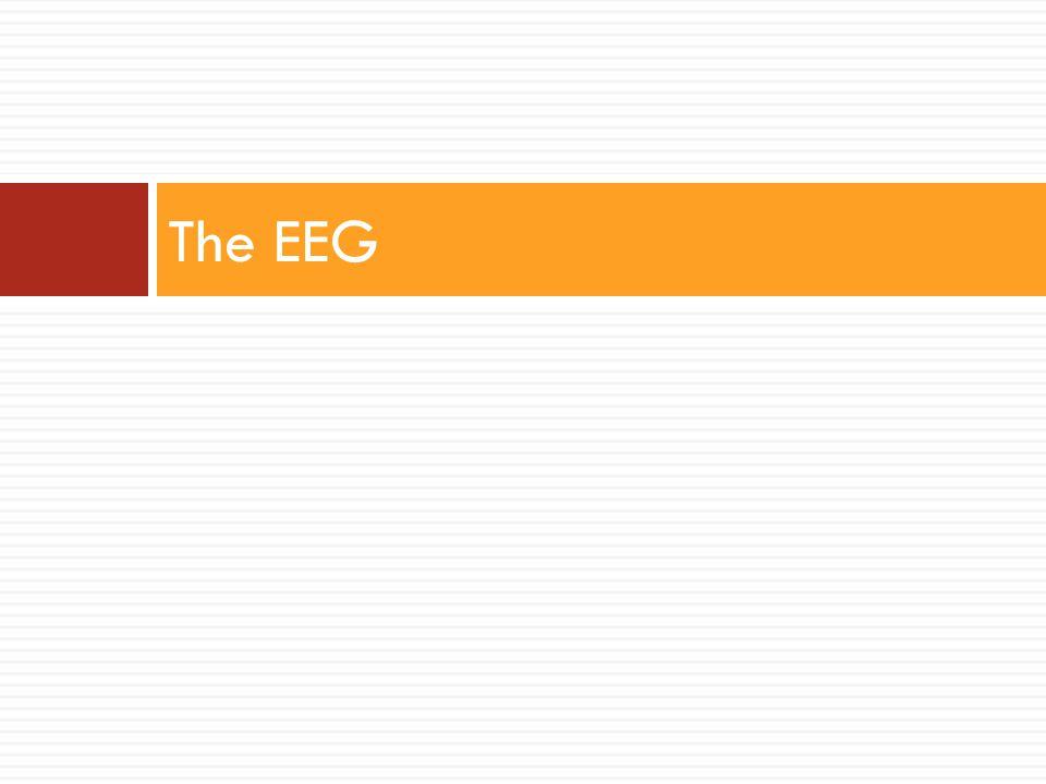 The EEG