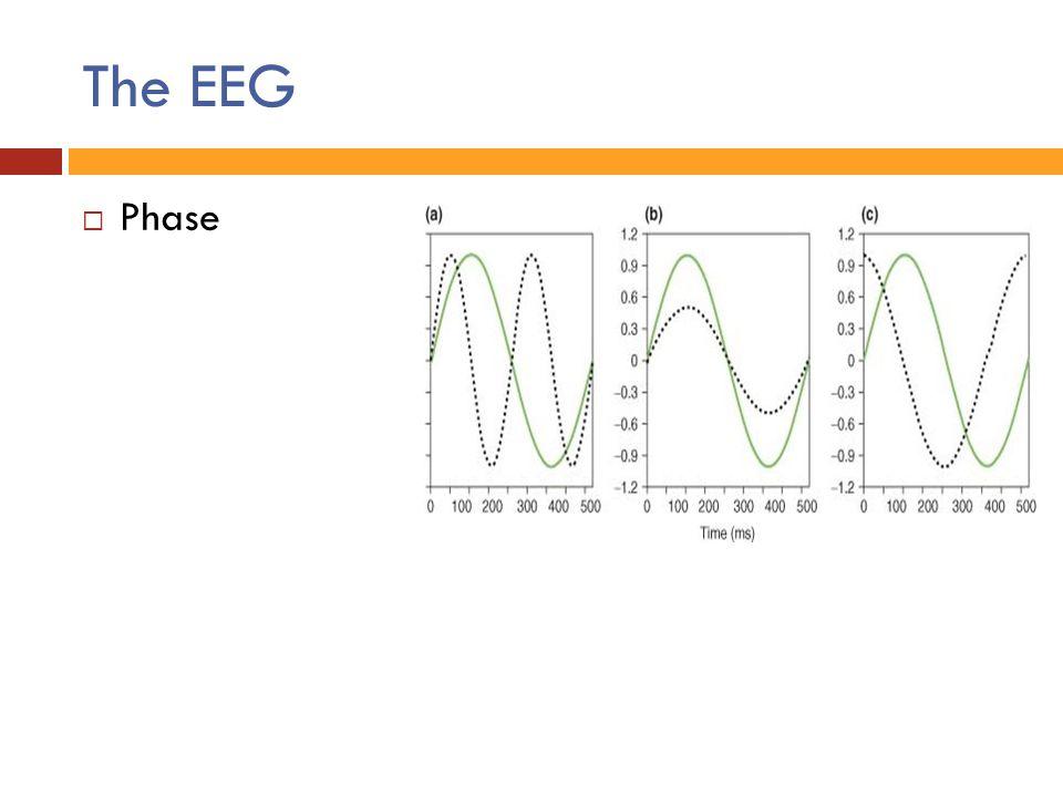 The EEG  Phase