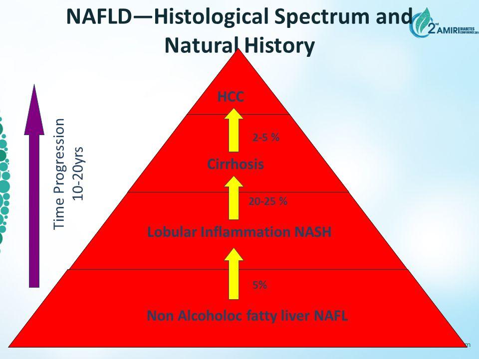 NAFLD—Histological Spectrum and Natural History HCC Non Alcoholoc fatty liver NAFL Lobular Inflammation NASH Cirrhosis Time Progression 10-20yrs 20-25
