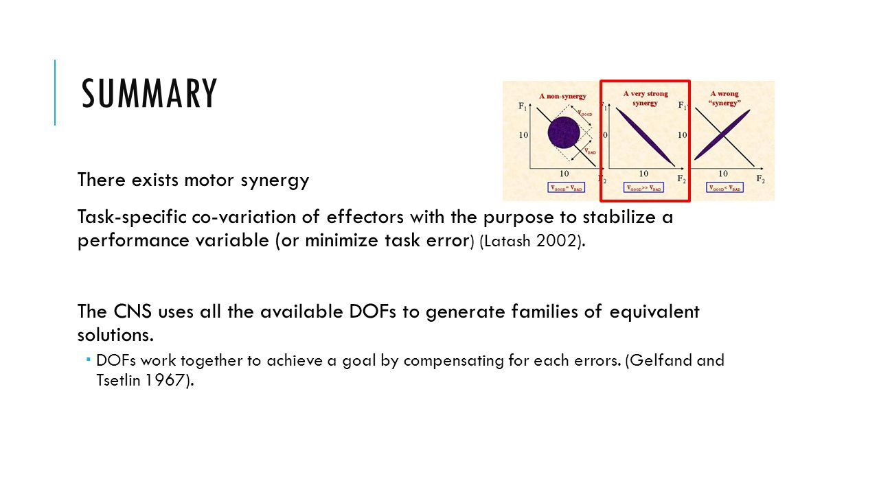 SUMMARY There exists motor synergy Task-specific co-variation of effectors with the purpose to stabilize a performance variable (or minimize task error ) (Latash 2002).