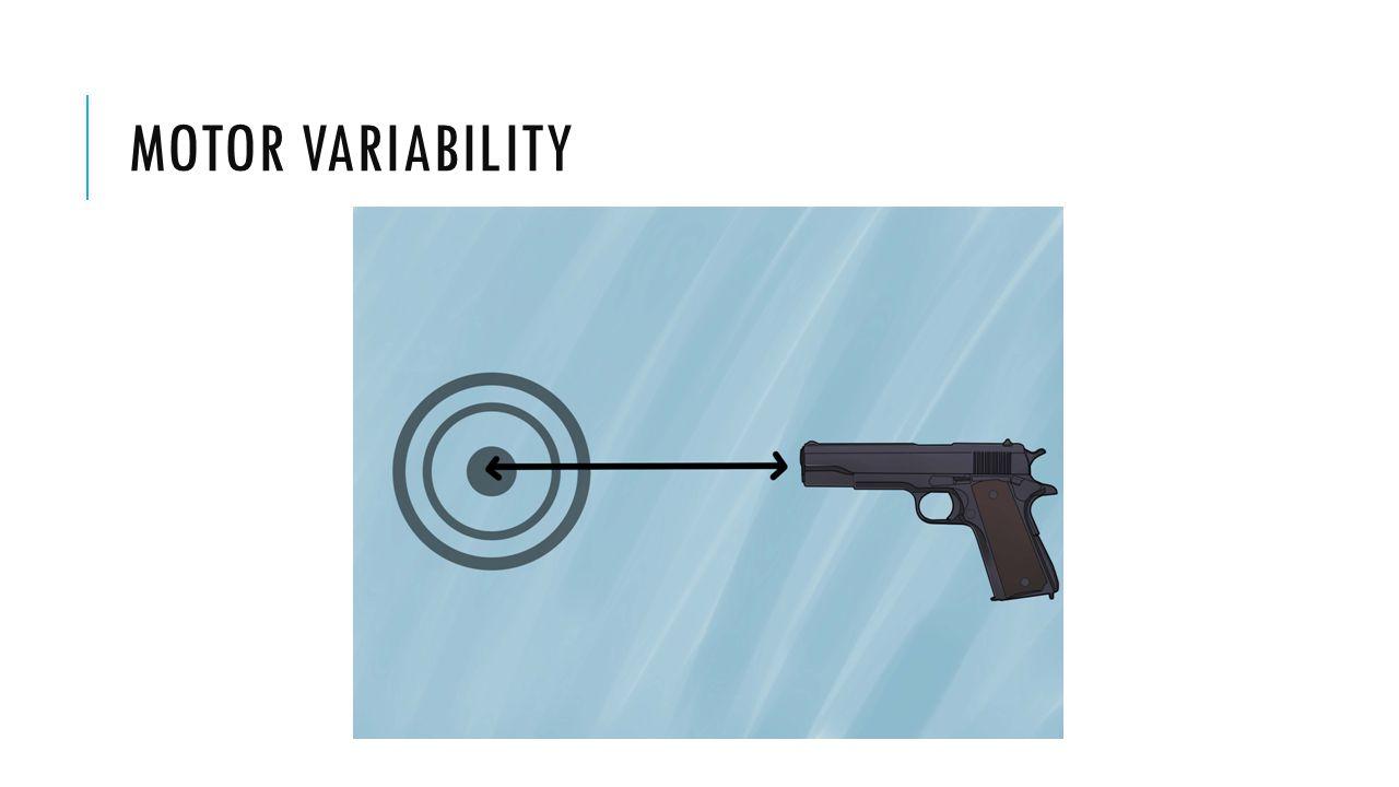MOTOR VARIABILITY