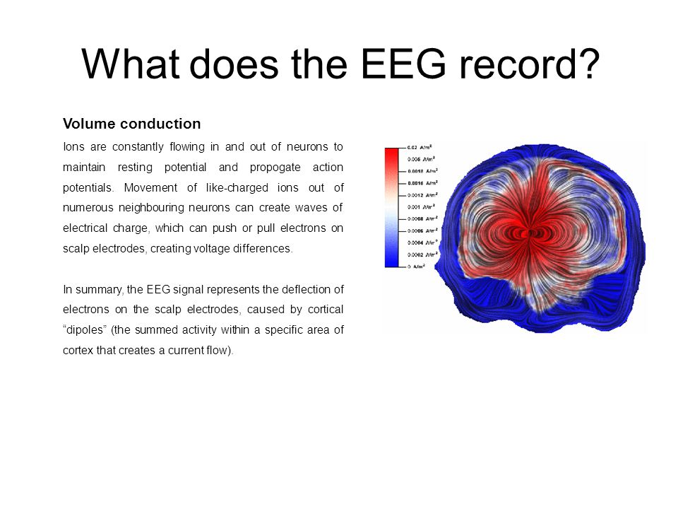 What does the EEG record.