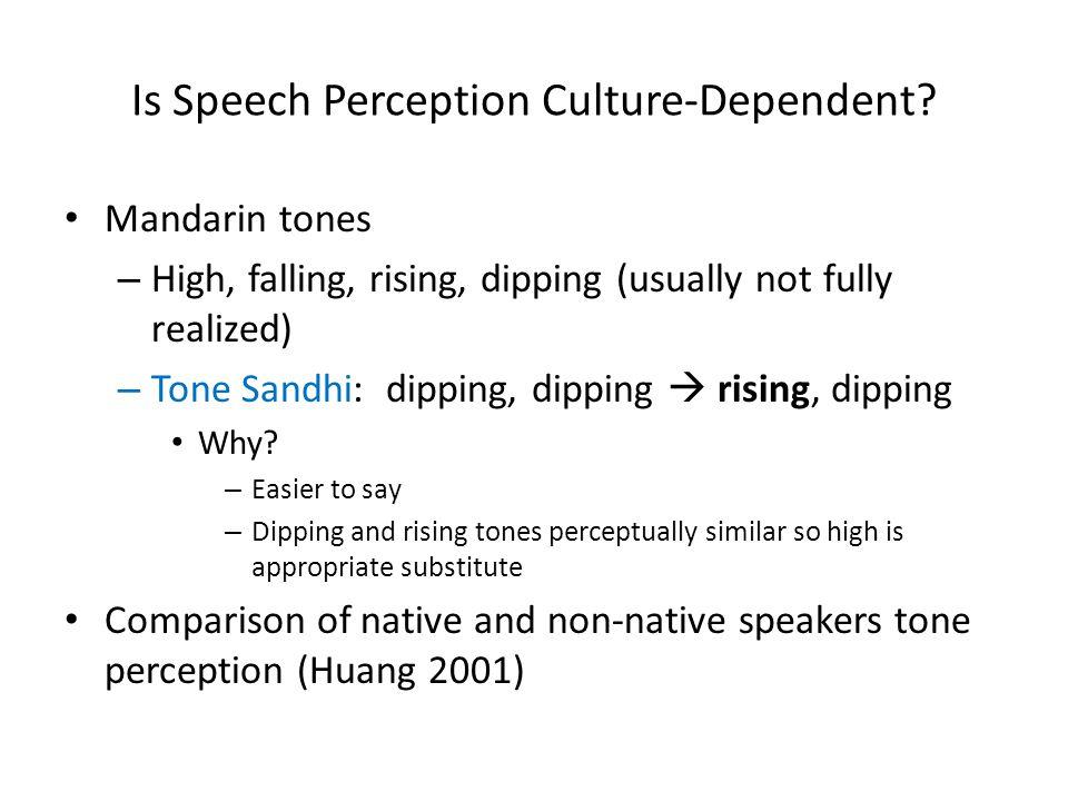 Is Speech Perception Culture-Dependent.