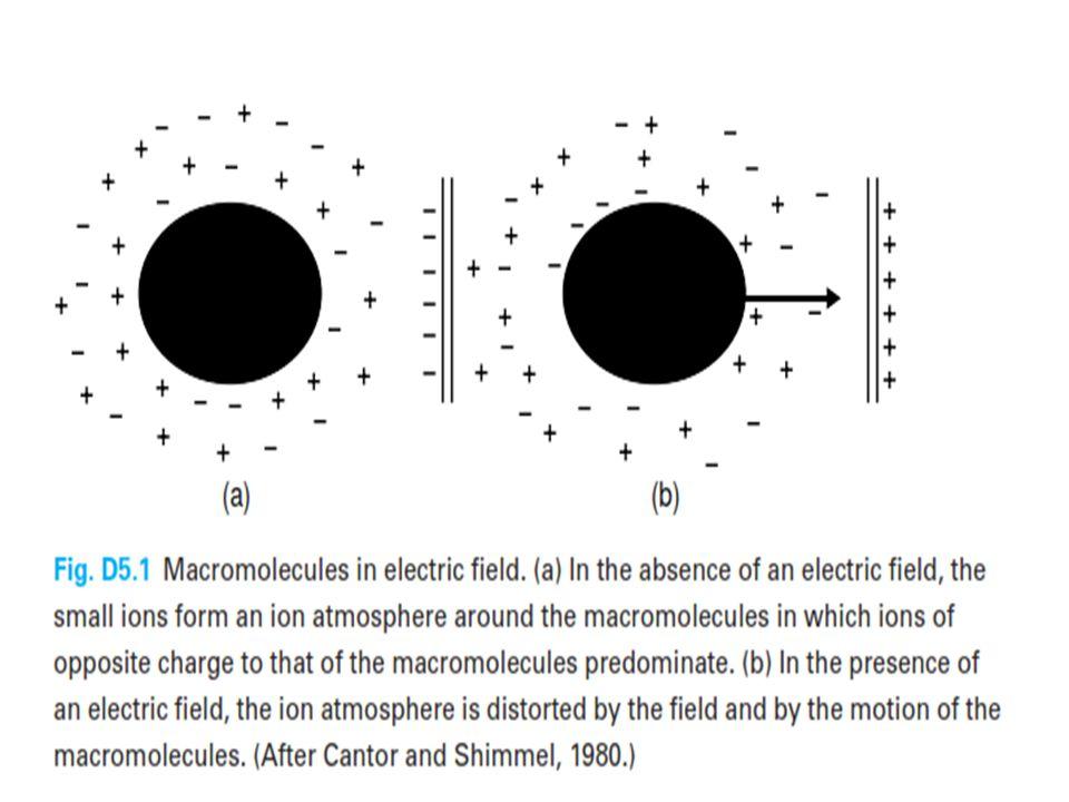 https://upload.wikimedia.org/wikipedia/comm ons/a/a6/Gel_electrophoresis_apparatus.JP G