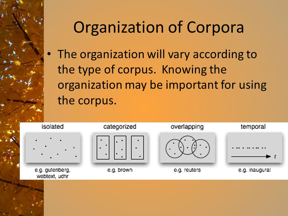 Organization of Corpora The organization will vary according to the type of corpus.