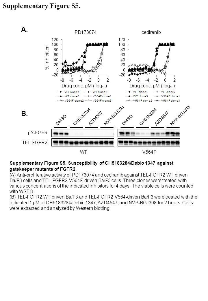pY-FGFR WT CH5183284AZD4547 NVP-BGJ398 DMSO TEL-FGFR2 V564F CH5183284AZD4547 NVP-BGJ398 DMSO Supplementary Figure S5. Susceptibility of CH5183284/Debi