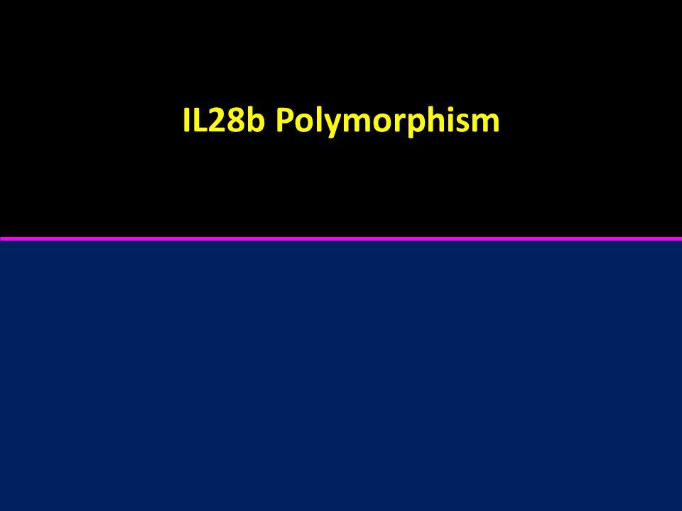 IL28b Polymorphism
