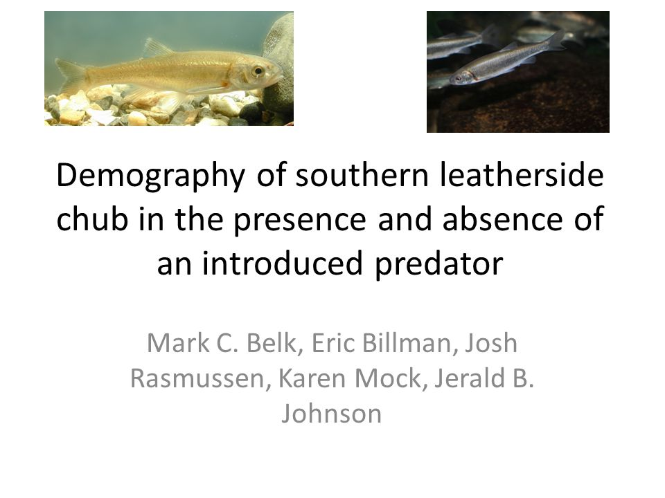 Demography of southern leatherside chub in the presence and absence of an introduced predator Mark C.