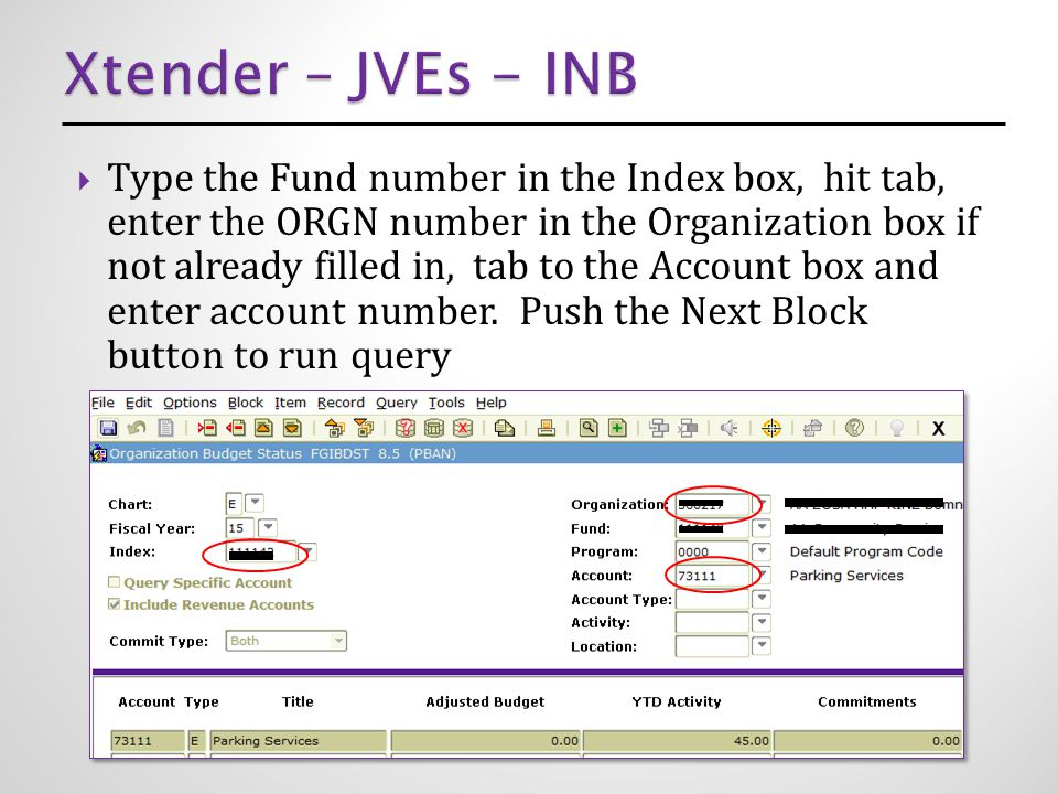  Type the Fund number in the Index box, hit tab, enter the ORGN number in the Organization box if not already filled in, tab to the Account box and enter account number.