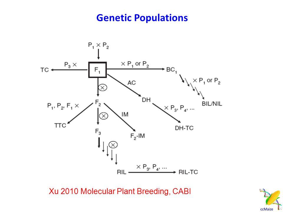 Factors Affecting Mapping: Population Sizes Xu 2010 Molecular Plant Breeding, CABI