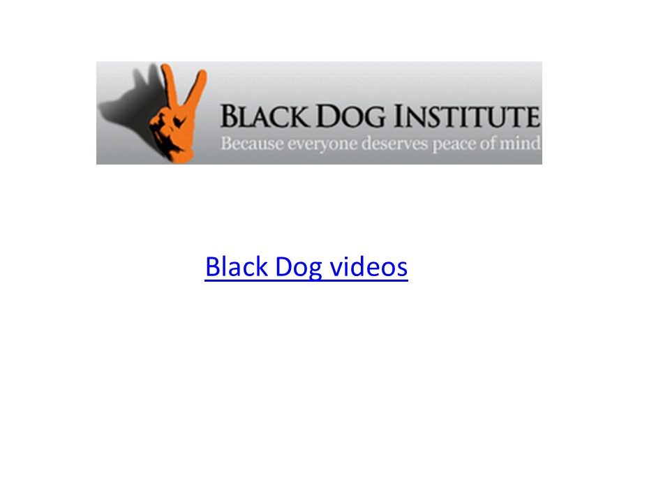 Black Dog videos