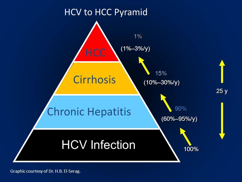 HCV Infection Chronic Hepatitis Cirrhosis HCC 1%(1%–3%/y) 100% 25 y 90% (60%–95%/y) 15% (10%–30%/y) HCV to HCC Pyramid Graphic courtesy of Dr. H.B. El