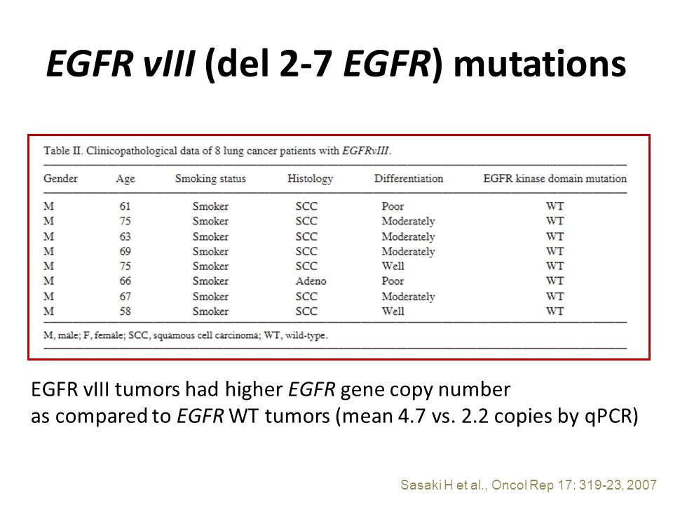 EGFR vIII (del 2-7 EGFR) mutations Sasaki H et al., Oncol Rep 17: 319-23, 2007 EGFR vIII tumors had higher EGFR gene copy number as compared to EGFR WT tumors (mean 4.7 vs.