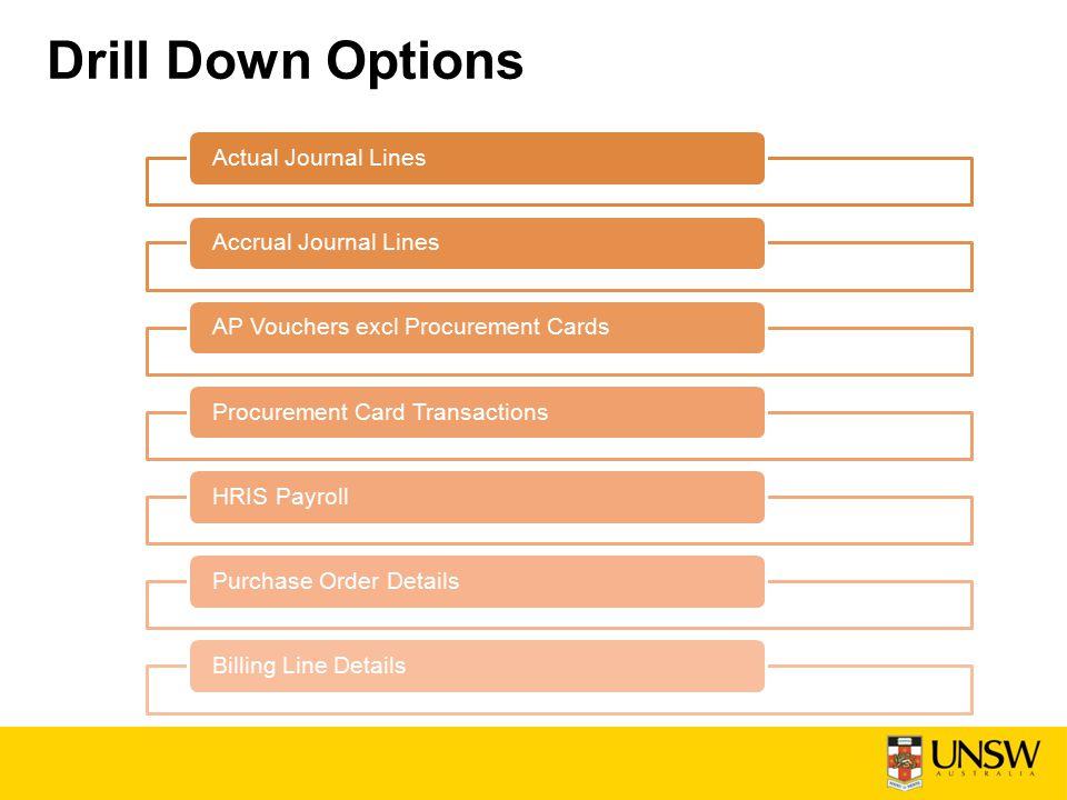Drill Down Options Actual Journal LinesAccrual Journal LinesAP Vouchers excl Procurement Cards Procurement Card TransactionsHRIS Payroll Purchase Order DetailsBilling Line Details