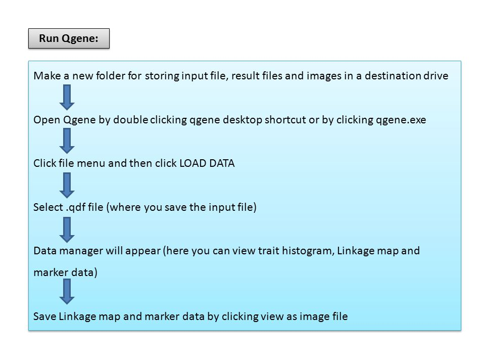 Run Qgene: Make a new folder for storing input file, result files and images in a destination drive Open Qgene by double clicking qgene desktop shortcut or by clicking qgene.exe Click file menu and then click LOAD DATA Select.qdf file (where you save the input file) Data manager will appear (here you can view trait histogram, Linkage map and marker data) Save Linkage map and marker data by clicking view as image file Make a new folder for storing input file, result files and images in a destination drive Open Qgene by double clicking qgene desktop shortcut or by clicking qgene.exe Click file menu and then click LOAD DATA Select.qdf file (where you save the input file) Data manager will appear (here you can view trait histogram, Linkage map and marker data) Save Linkage map and marker data by clicking view as image file