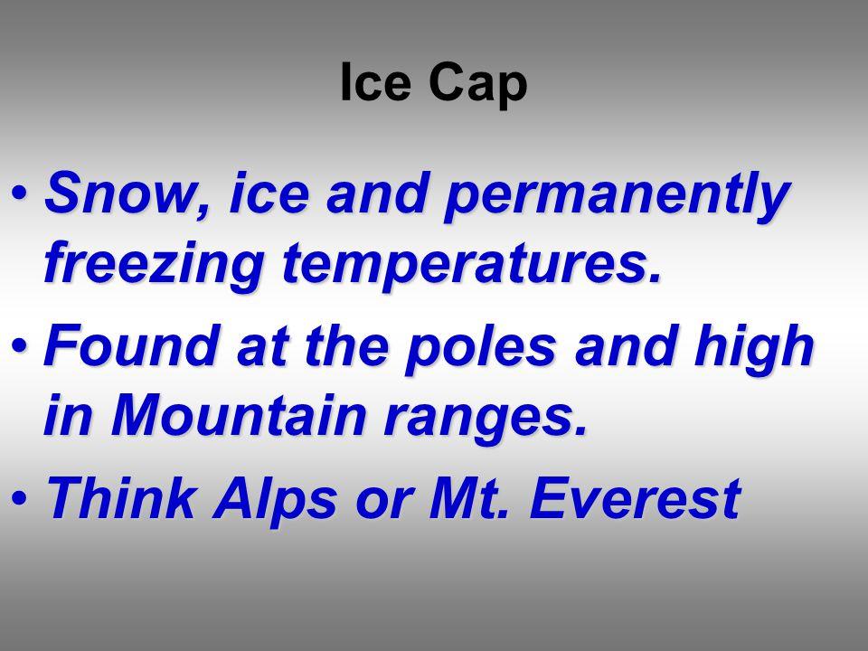 Ice Cap Snow, ice and permanently freezing temperatures.Snow, ice and permanently freezing temperatures.