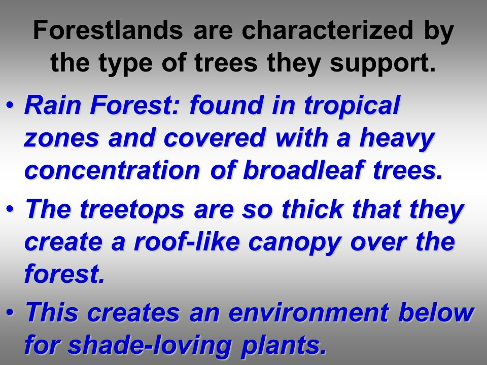 Forestlands are characterized by the type of trees they support.