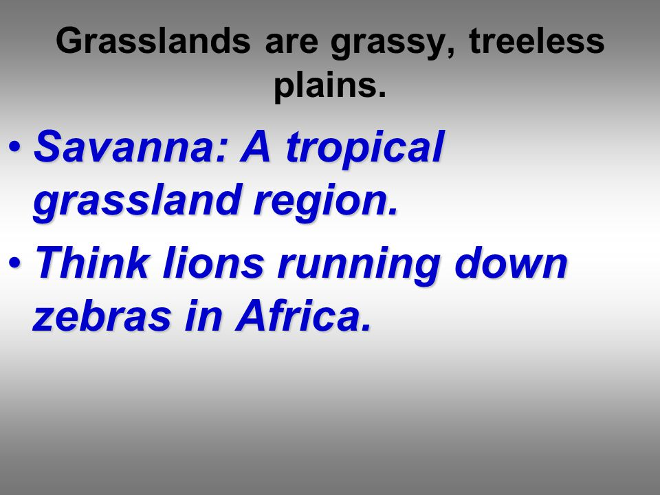 Grasslands are grassy, treeless plains.