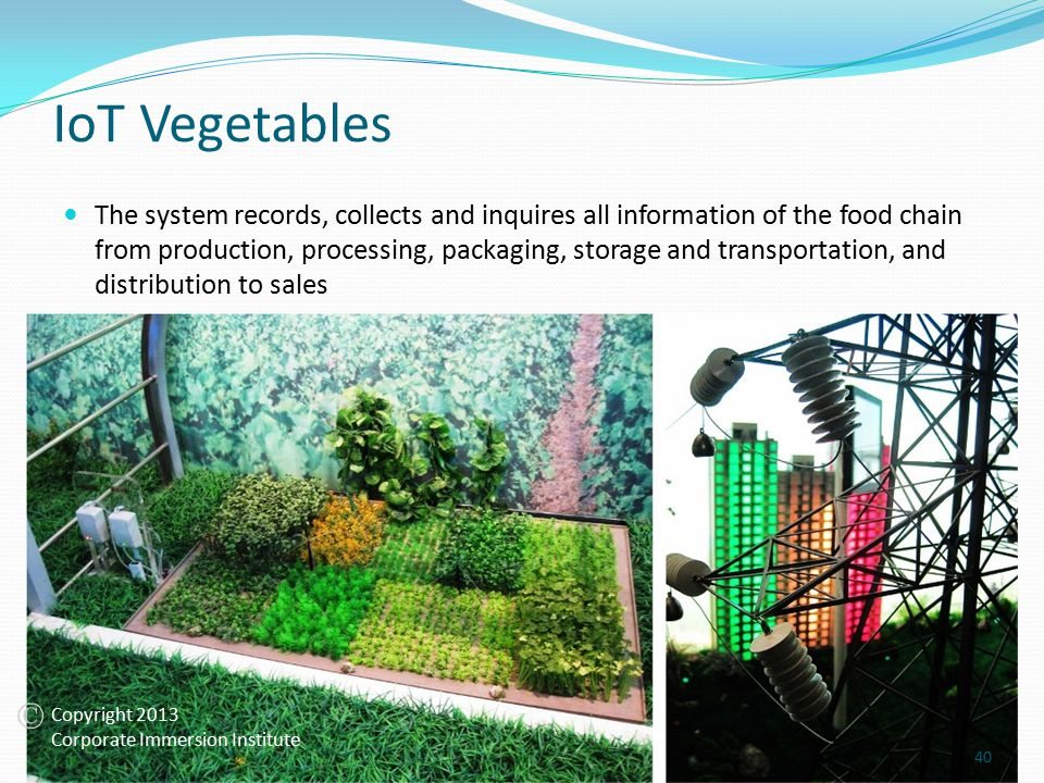 IoT Vegetables The system records, collects and inquires all information of the food chain from production, processing, packaging, storage and transportation, and distribution to sales 40 Copyright 2013 Corporate Immersion Institute