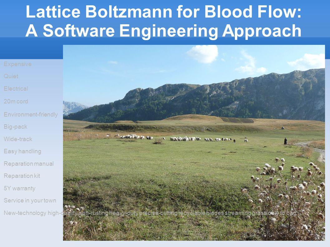 Lattice Boltzmann for Blood Flow: A Software Engineering Approach 6/21