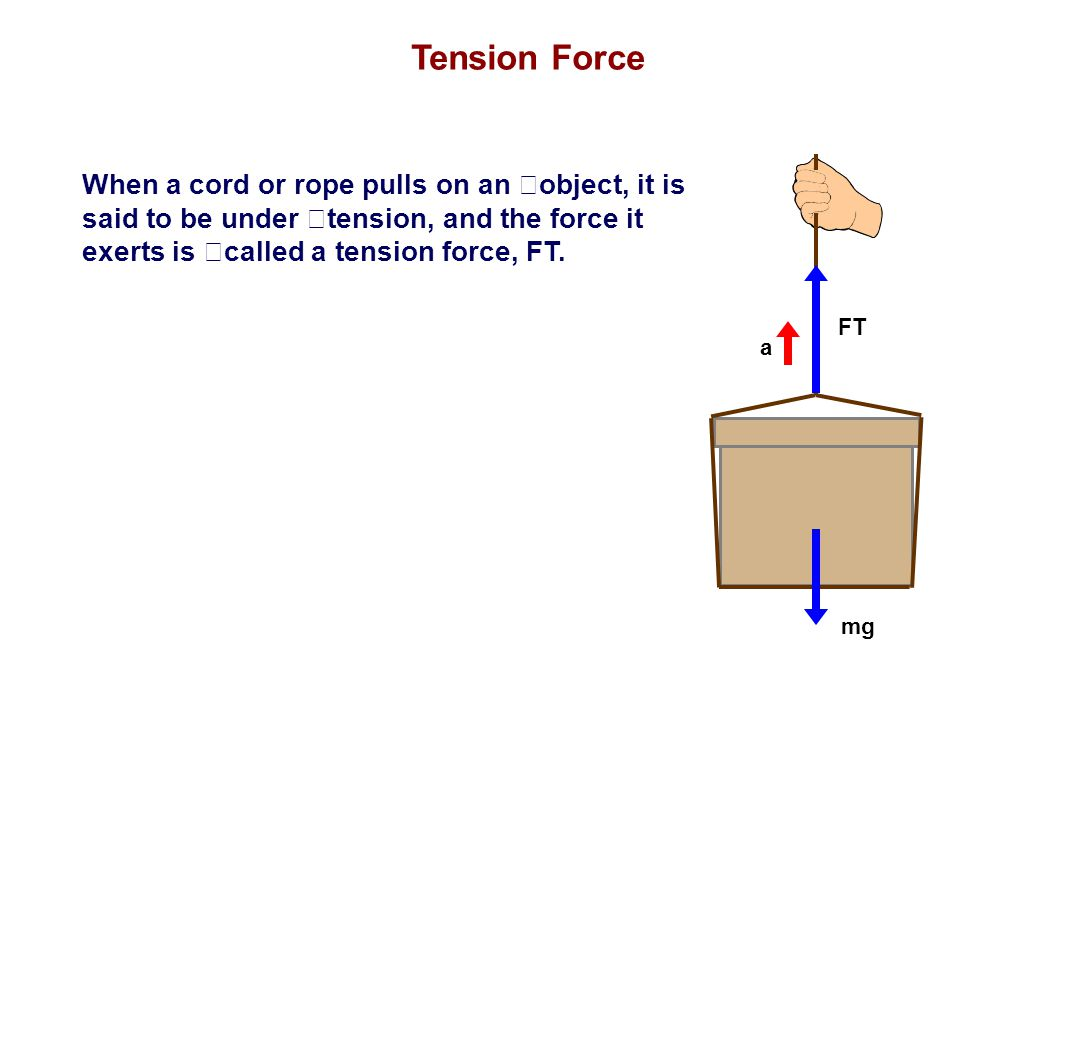 When a cord or rope pulls on an object, it is said to be under tension, and the force it exerts is called a tension force, FT. Tension Force FT mg a