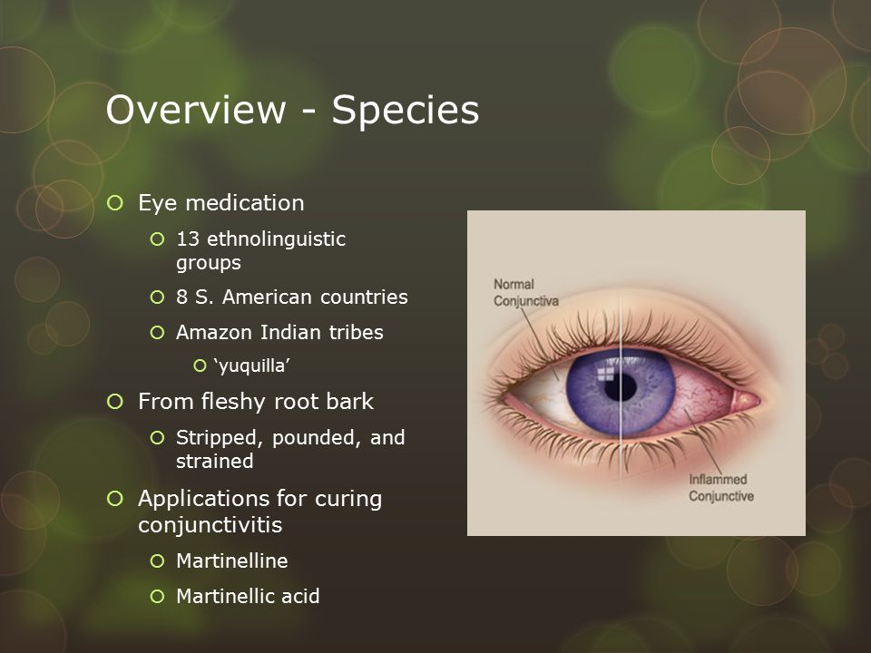 Overview - Species  Eye medication  13 ethnolinguistic groups  8 S.