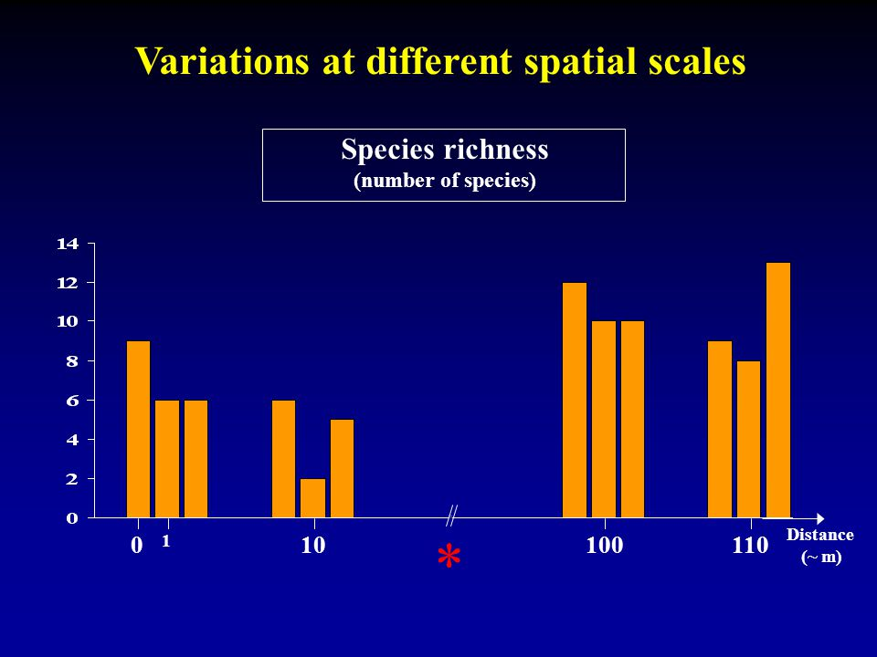 Variations at different spatial scales Species richness (number of species) 0 1 10 100110 Distance (~ m) *