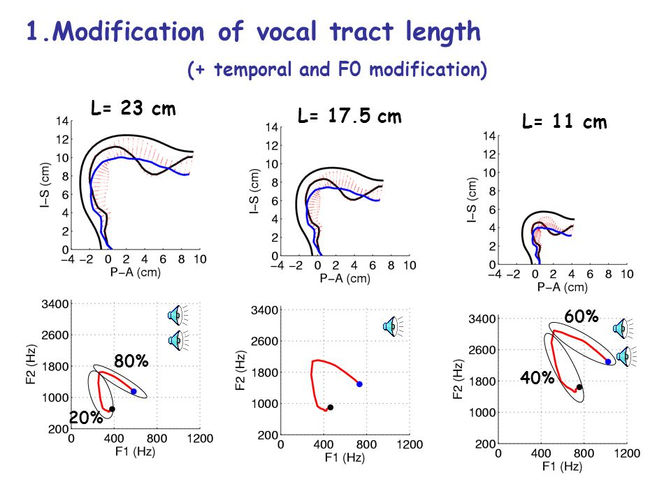 1.Modification of vocal tract length (+ temporal modification) L= 17.5 cm