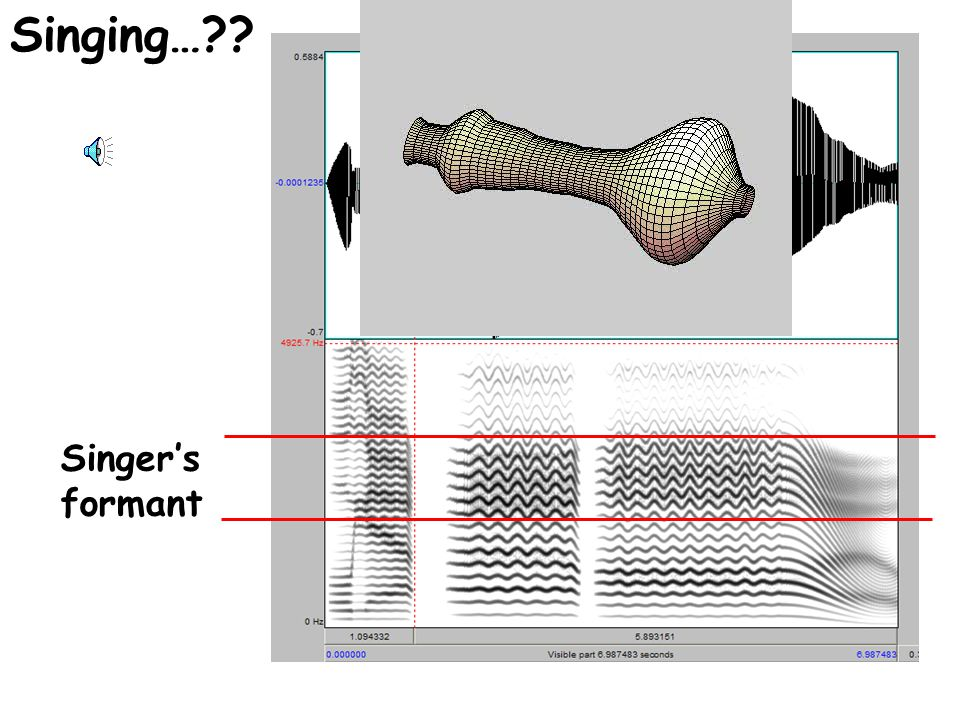 Beyond human voice quality… F0 = 30-50 Hz Vocal tract length = 31 cm F0 = 600-1000 Hz Vocal tract length = 4.4 cm