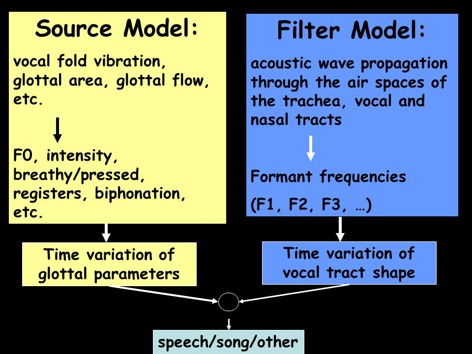 Sound Production = Combination of Sound Sources and Filters Filter: Air spaces created by the trachea, pharynx, oral cavity, nasal passages Trachea Primary Source: Vibration of the vocal folds creates a time-varying airflow (glottal flow).