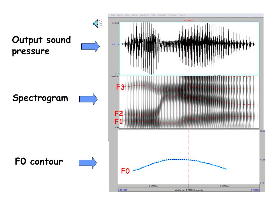 Change the vocal tract shape to produce speech source filter output