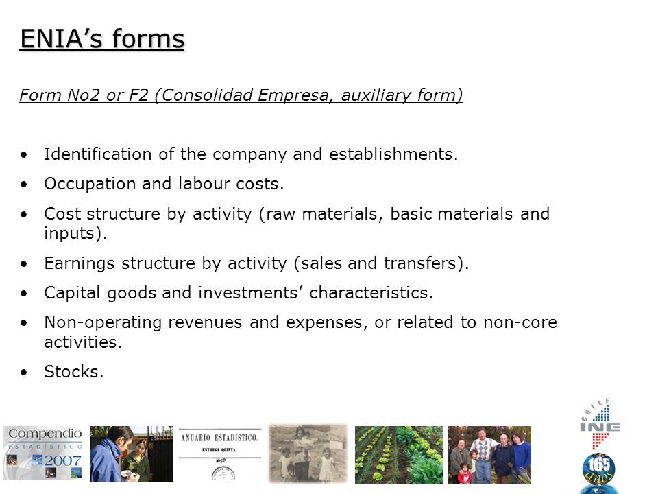 ENIA's forms Form No2 or F2 (Consolidad Empresa, auxiliary form) Identification of the company and establishments.