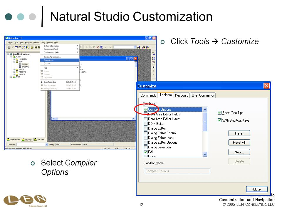 12 Natural Studio Customization and Navigation © 2005 LEN C ONSULTING LLC Natural Studio Customization Click Tools  Customize Select Compiler Options